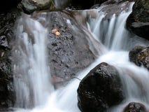 Milchiger Wasserfall Stockfotos