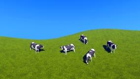 Milchkühe, die auf Draufsicht der grünen Weide weiden lassen Stockbilder