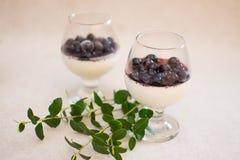 Milchnachtisch mit Blaubeermarmelade und frischen Beeren lizenzfreie stockbilder