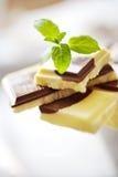 Milchschokolade mit frischer Minze Stockfotos