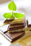 Milchschokolade mit frischer Minze Stockbild
