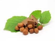 Milchschokolade mit Haselnüssen und Blättern stockbild