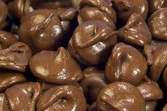 Milchschokoladenplätzchen Stockfoto