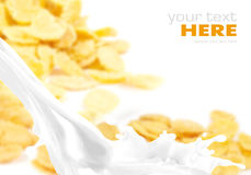 Milchspritzen auf Corn Flakes Lizenzfreie Stockfotografie