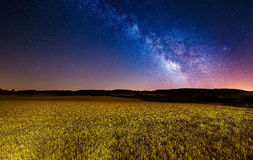 Milchstraße über einem Getreidefeld Stockfotos