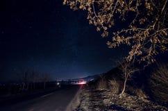 Milchstraße über einer Straße und einem Baum, die mit Auto nah sind, leuchtet auf brenches Nachtstraße mit Sternen auf Himmel, Sh stockbild