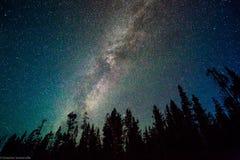 Milchstraße über Yellowstone Stockfotos