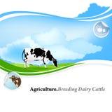 Milchwirtschaft stock abbildung