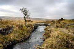 Zima na Dartmoor Zdjęcia Royalty Free
