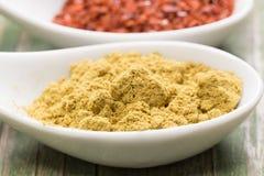 Mild curry Royaltyfri Fotografi
