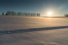 Mild sju kulle i vinter, Biei, Hokkaido, Japan Royaltyfria Foton
