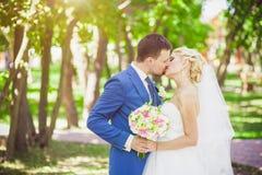 Mildern Sie Umarmungsbraut und -bräutigam Stockfoto