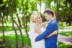 Mildern Sie Umarmungsbraut und -bräutigam Lizenzfreies Stockfoto