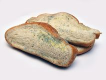 Mildewed bread Stock Photo