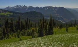 Mildred punkt, Mt Dżdżysty park narodowy, WA fotografia royalty free
