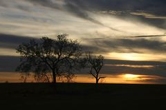 Mildura Sonnenuntergang Lizenzfreies Stockbild