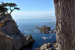 17 Mile Drive. A cove along Carmel's famous 17 mile drive Royalty Free Stock Photography