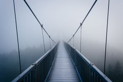 The Mile-High Swinging Bridge in fog, at Grandfather Mountain, N Stock Image
