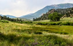 4 Mile Landscape Stock Photography