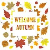 Mile widziany jesień Sprzedaż sztandar z liśćmi Liście w sezon sprzedaży projekta wektorowym panelu ilustracja Biały tło Fotografia Royalty Free