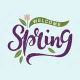 Mile widziany wiosna tekst jako logotyp, odznaka i ikona, Zdjęcie Stock
