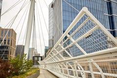 Milenium most przy b?onie parkiem w Denver, Kolorado zdjęcie stock