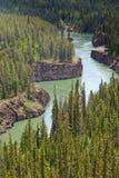 Miles Canyon av Yukon River nära Whitehorse Kanada Royaltyfri Foto