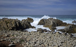 17 Miles Drive, Califórnia, EUA Foto de Stock Royalty Free