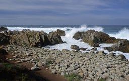 17 Miles Drive, Kalifornien, USA Arkivbilder