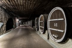 Milestii Mici, Moldova - November 2018: Underground wine barrels royalty free stock images