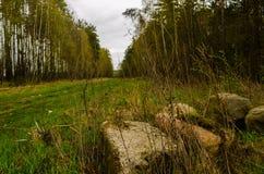 milestone Zdjęcia Stock