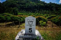 Milestone. ChiangMai, Thailand. December, 03-2017: Milestone was located in front of agricultural farm on top of mountain Royalty Free Stock Photo
