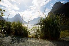 Milford声音惊人的看法在新西兰 免版税库存图片