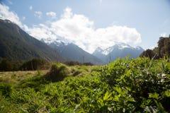 Milford声音惊人的看法在新西兰 免版税图库摄影