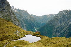 milford νέα διαδρομή Ζηλανδία στοκ φωτογραφία με δικαίωμα ελεύθερης χρήσης