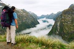 雾milford新的跟踪谷西兰 免版税库存照片