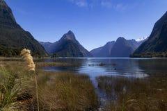 Milford Brzmi, Nowa Zelandia - infuła szczyt jest ikonowym punktem zwrotnym Milford dźwięk w Fiordland parku narodowym Lata midda obraz stock