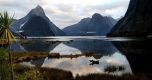 milford nowy rozsądny Zealand Obrazy Stock