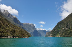 Milford sound. Taken at Milford sound, Fiord land National Park, New Zealand royalty free stock photos