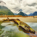 Milford sound Stock Photography