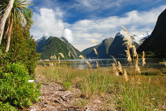 Milford Sound. (Piopiotahi in Maori), fjord in the south west of New Zealand's South Island Stock Images
