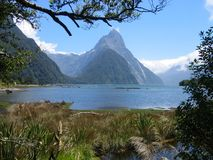 Milford Sound. View at Mitre Peak at Milford Sound in New Zealand Royalty Free Stock Photo