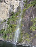 Milford Sound Стоковые Изображения RF