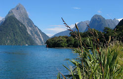 Milford Sound Stockfotos