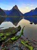 Milford Sound foto de stock royalty free