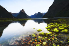 Milford Sound Photos stock