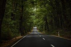 Milford Sound Immagini Stock Libere da Diritti