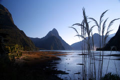 Milford Sound. Sunrise at Milford Sound in New Zealand stock photo