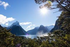 Milford Sound attraverso gli alberi fotografie stock