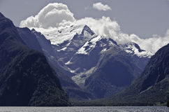 Milford Sound. Beautiful New Zealand. Royalty Free Stock Photo